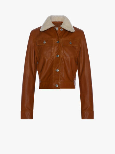 Women's Cropped Rider Jacket