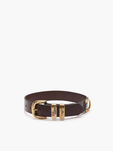 """Drover 1 1/4"""" Dog Collar"""